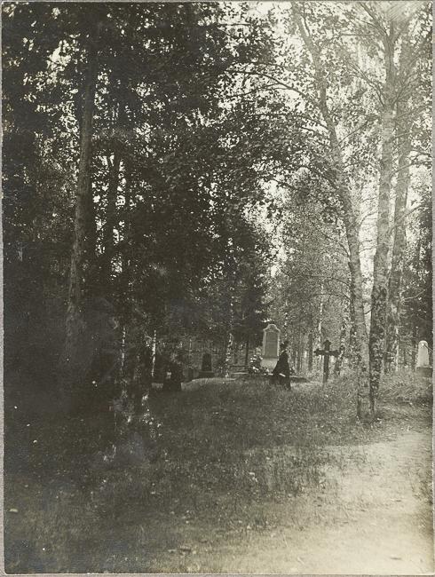 Hautaristejä ja -kiviä nurmikolla puiden lomassa.