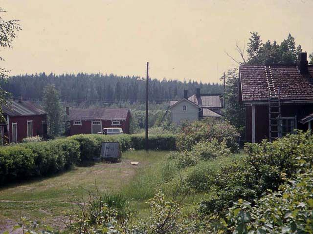 Piha-alue, jota reunustaa pensasaita. Oikealla pensaiden takana on rakennus. Pensasaidan takana vasemmalla ja keskellä on kolme rakennusta. Taustalla on metsää.